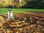 Herbst in der Forellenwegsiedlung 2