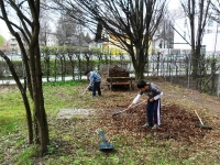 Garten-Action