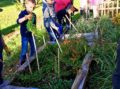 Gartenprojekt – Vom Samen zur Ernte